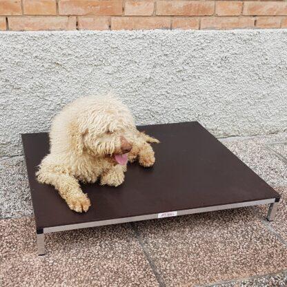 pedana relax cani